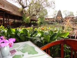 cafe-lotus