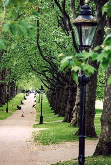 hyde park 96.jpg